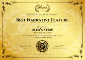 Best Narrative Feature